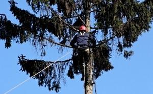 Обрезка  и удаление аварийных деревьев Кировоград