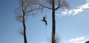 Обрезка  и удаление аварийных деревьев в Кировограде
